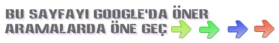 google artı butonu