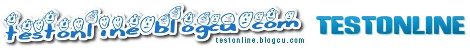 testonline.blogcu.com